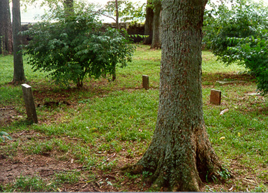 These four graves in the 